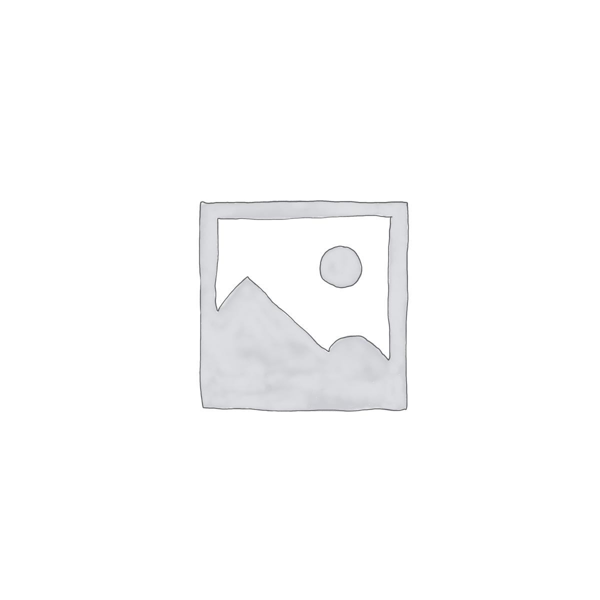 ORLEN ULEI HIDRAULIC HIPOL 6 20L
